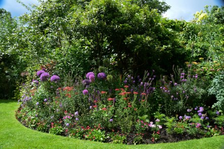 The gorgeous herbaceous border