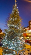 wi_2016-12_merry-muswell-6