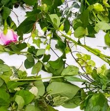 2017-06_Floristry_11